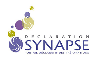 Synapse Declarations: get up-to-date with the January deadline
